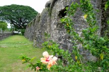 Pindangan Ruins Walls
